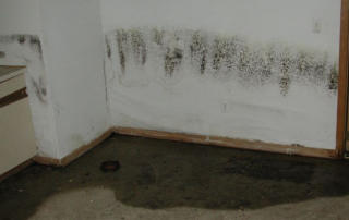 basement waterproofing ohio state waterproofing