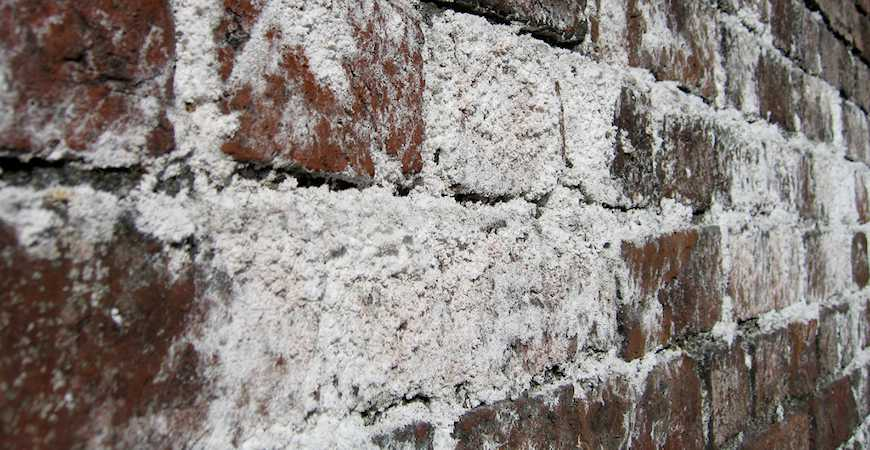 efflorescence or white mold ohio state waterproofing