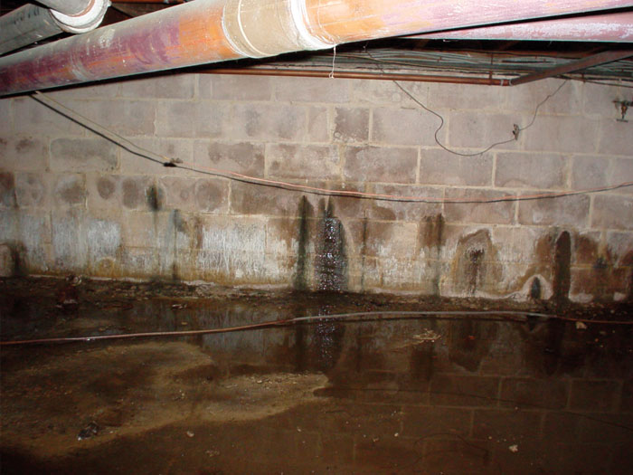 Bon How To Diagnose A Basement Leak In Macedonia OH
