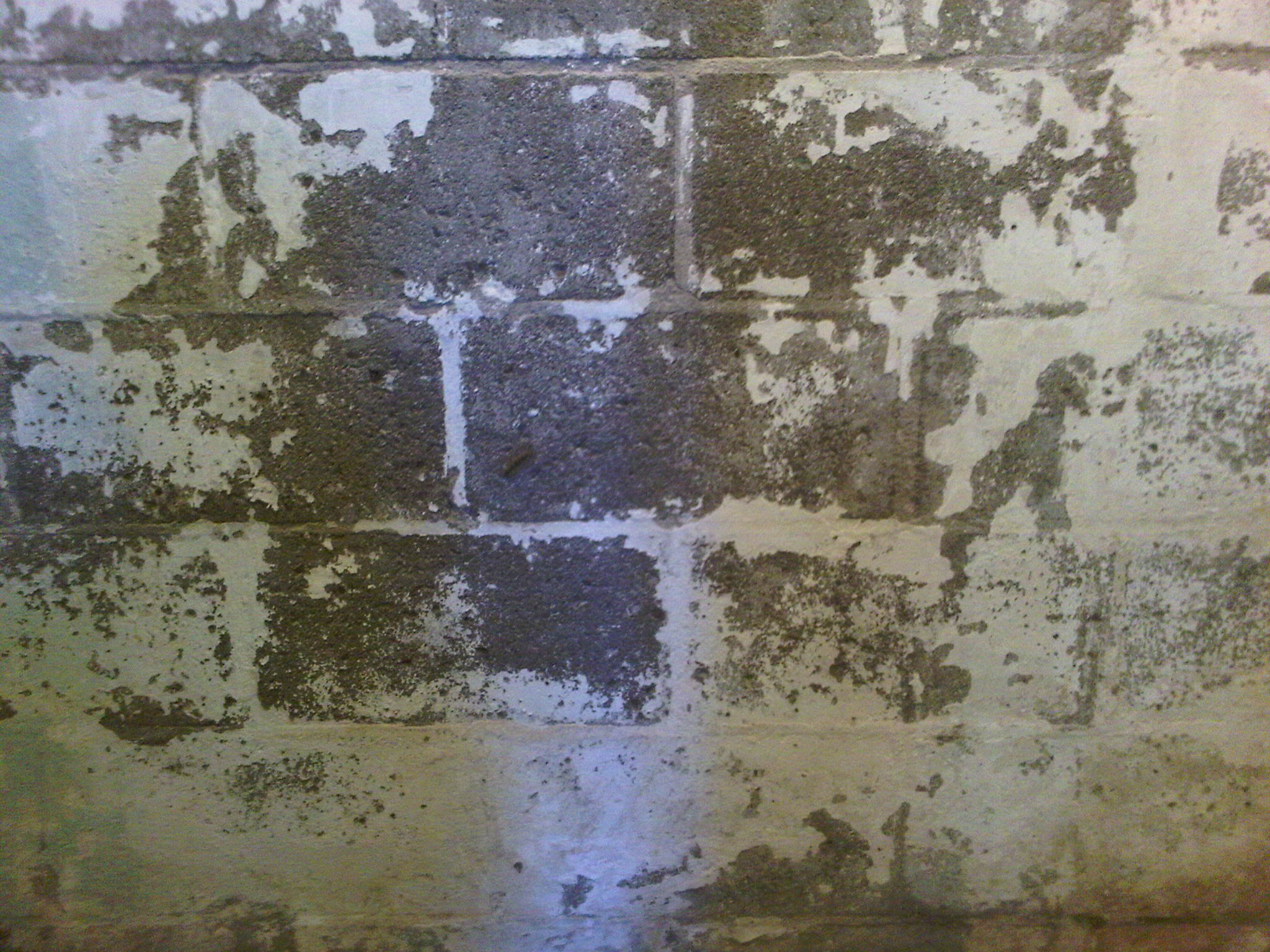 Damp walls and other signs of basement water problems for Concrete block basement