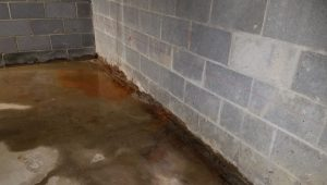 Waterproofing Company   Parma, OH   Ohio State Waterproofing