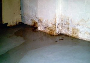 Wet Basement | Akron, OH | Ohio State Waterproofing
